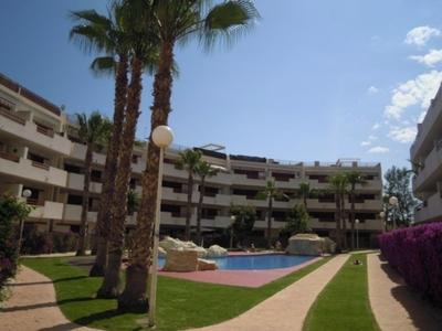 LPTOR117: Apartment in Playa Flamenca