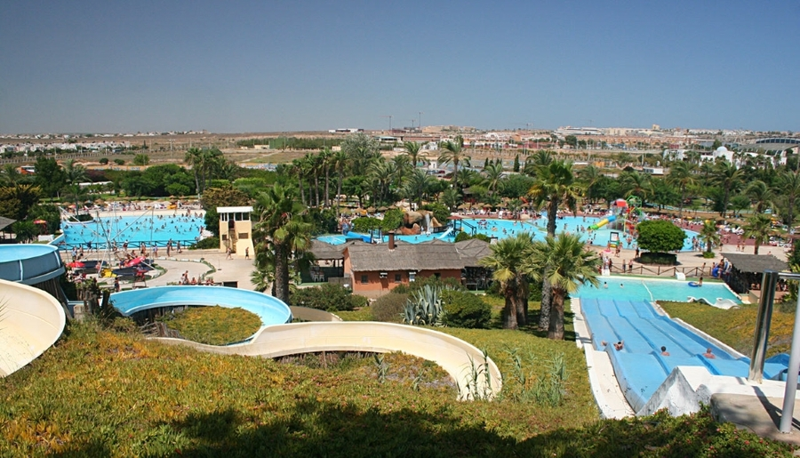 LFC2133: Business for sale in Torrevieja