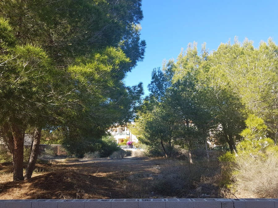 JTS001627:  for sale in Algorfa (Montemar)